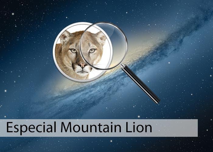 Especial Mountain Lion