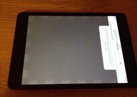 Problemas en la pantalla del nuevo iPad mini