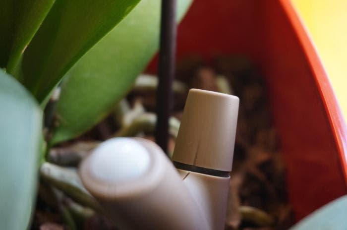 Parrot Flower Power, un pequeño jardinero que te ayudará a cuidar tus plantas
