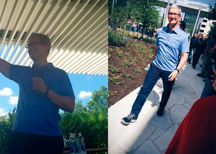 tim cook austin destacada