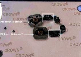 Comparación entre Touch ID del iPhone 5s con el supuesto del iPhone 6