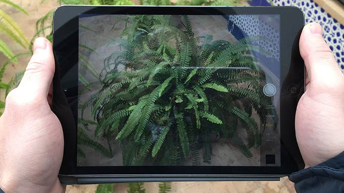 Fotografía con el iPad mini 2