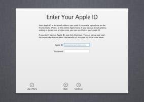 Pantalla para introducir el Apple ID