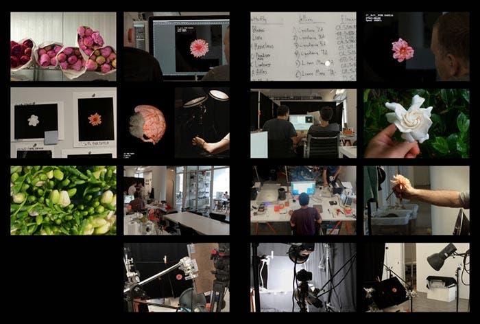 Proceso de grabación de las caras de Flores en el Apple Watch