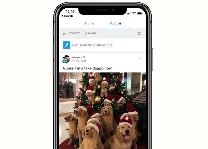 Reddit iOS